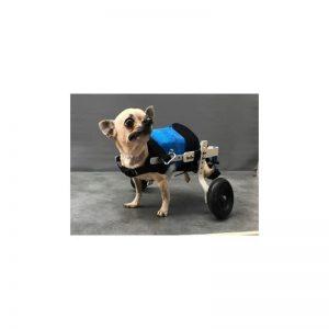 chariot pour chien handicapé de moins de 3 kg