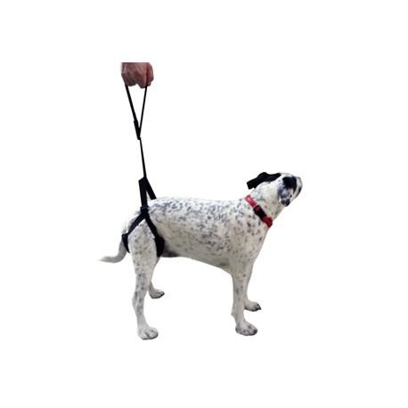harnais-de-pattes-arrieres-chiens