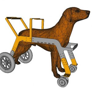 deambulateur pour chien orthopedie canine - 2