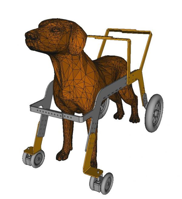 deambulateur pour chien orthopedie canine - 1