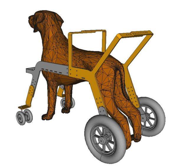 deambulateur pour chien orthopedie canine - 3