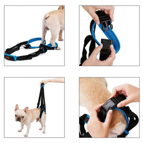Harnais de levage pour chien - Orthopédie canine - 4