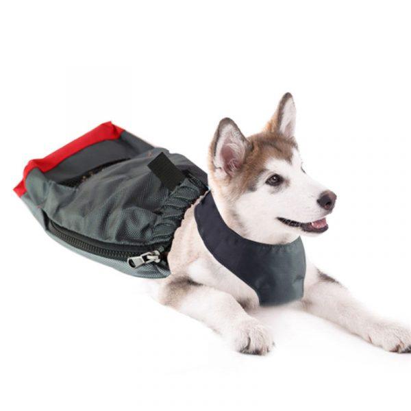 protecteur de déplacement interieur pour chien - 1
