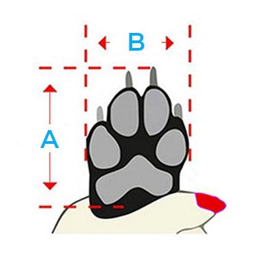 Bottines impermeables pour chien - 6