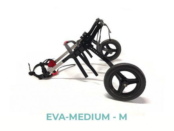 EVA-MEDIUM-M - 2