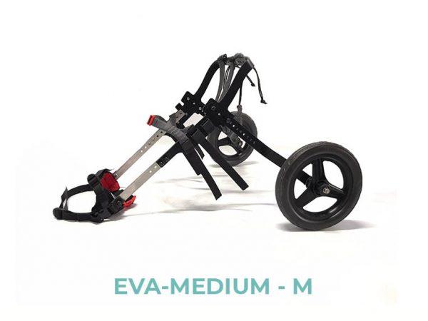 EVA-MEDIUM-M - 3