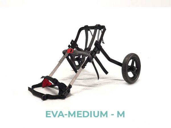 EVA-MEDIUM-M - 5